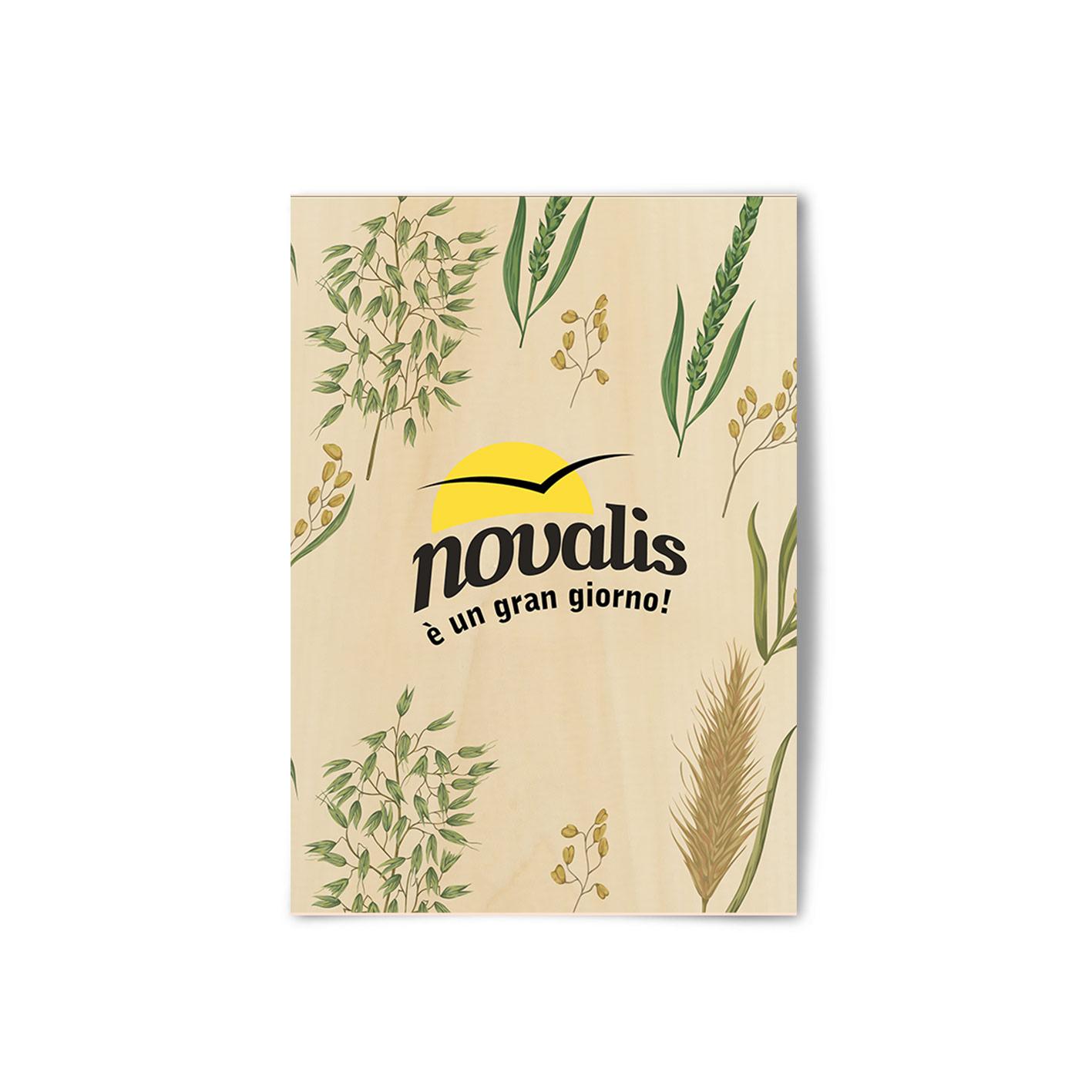 novalis-catalogo-1